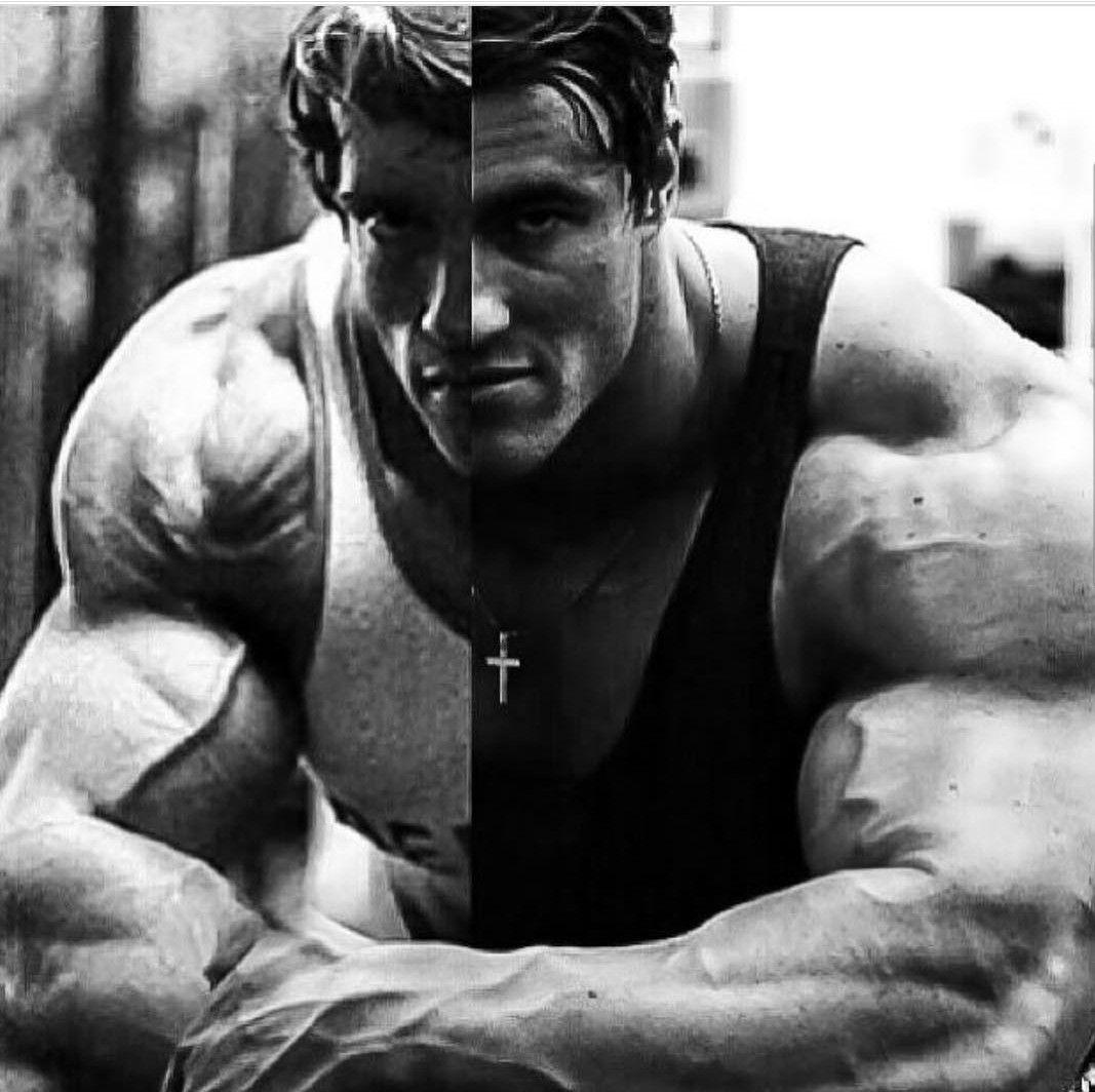 Old School Aesthetic Bodybuilding