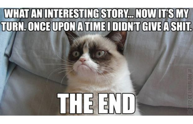Grumpy Cat Doesn T Care About Your Stories Grumpy Cat Humor Funny Grumpy Cat Memes Grumpy Cat Quotes