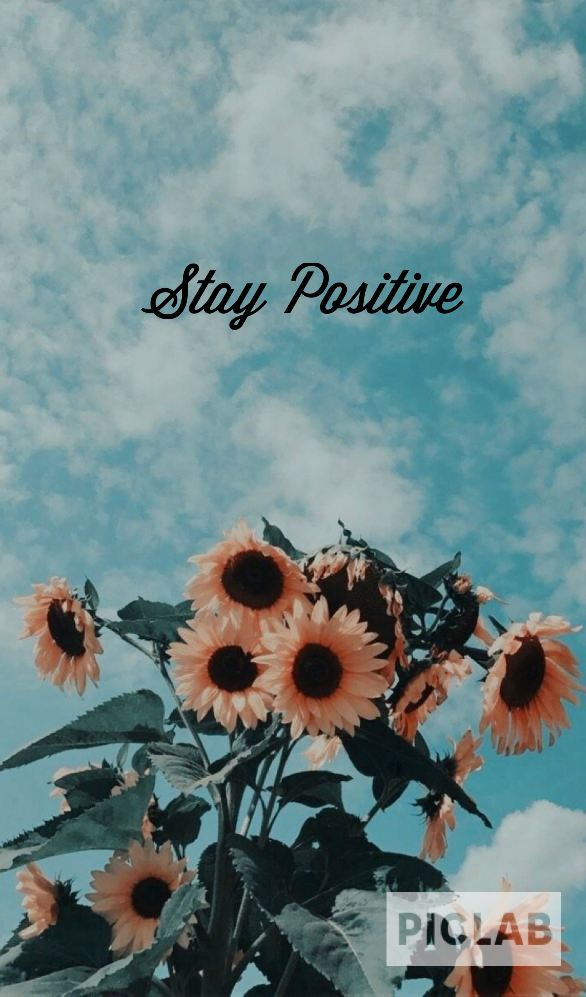 You're a Sunflower Cool wallpapers for phones, Love
