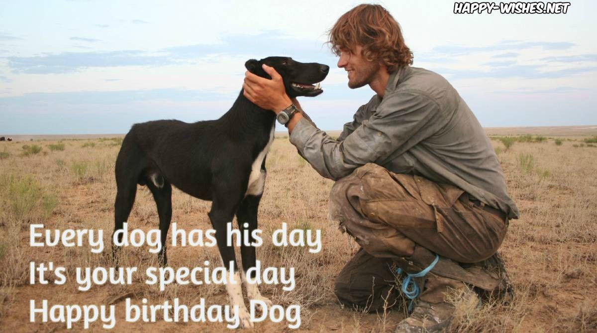 Happy Birthday Wishes For Dog Happy Birthday Me Birthday Wishes For Brother Happy Birthday Wishes