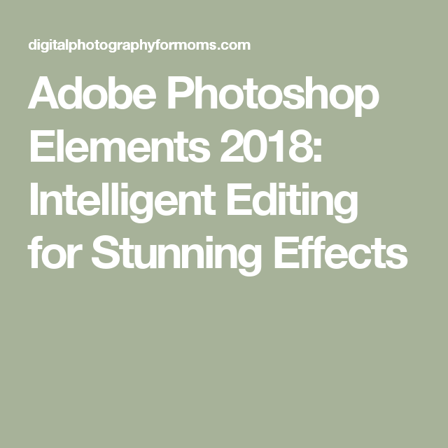 Adobe Photoshop Elements 2018 Intelligent Editing For Stunning Effects
