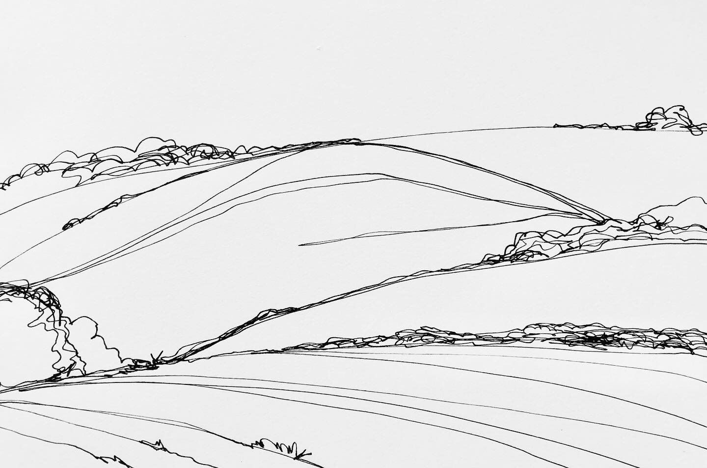English Countryside Continuous Line Drawing By Artist