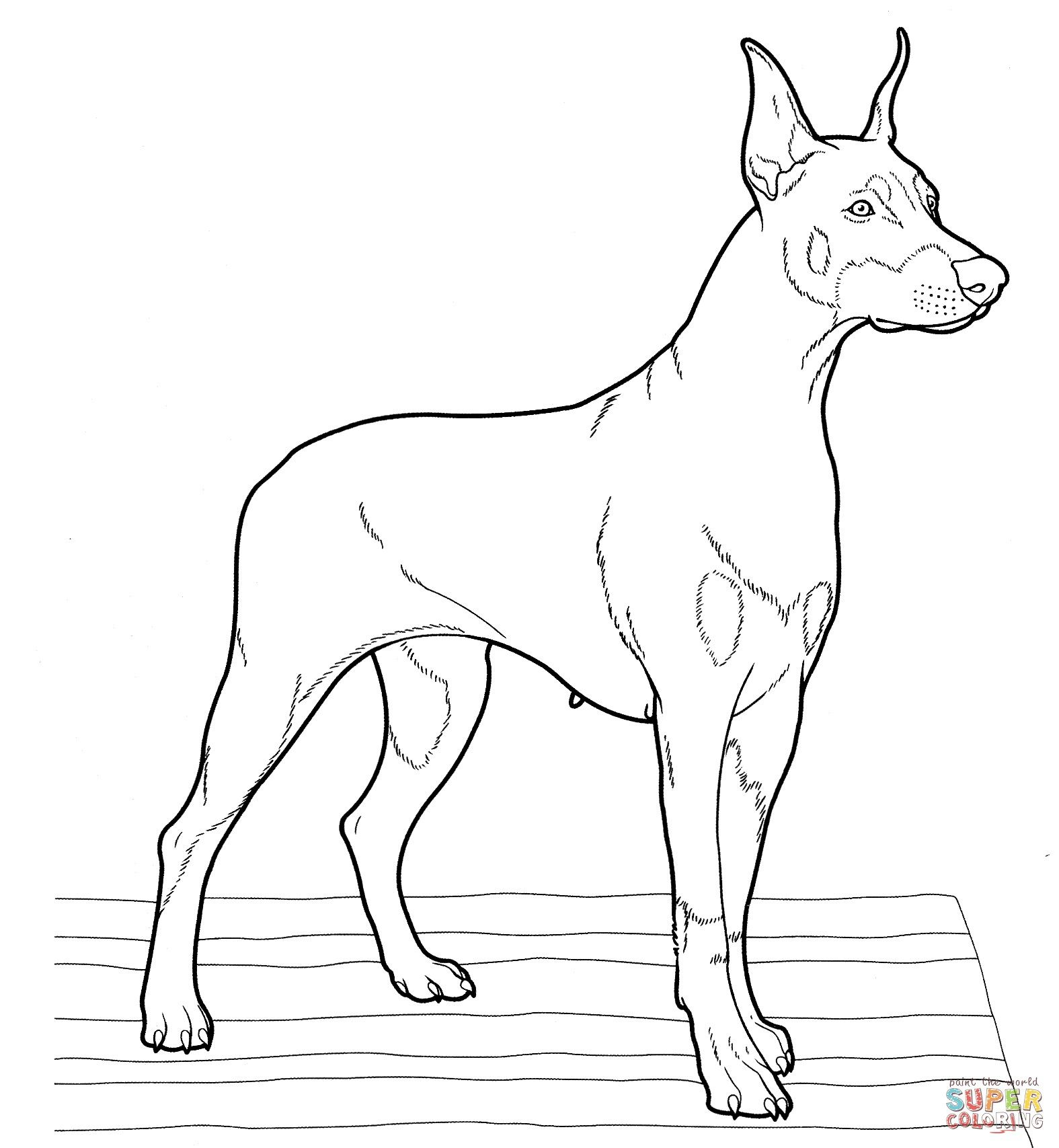 Realistic Dog Coloring Pages Through The Thousands Of Pictures On The Net Concerning Realistic Dog C Dog Coloring Page Dog Coloring Book Puppy Coloring Pages