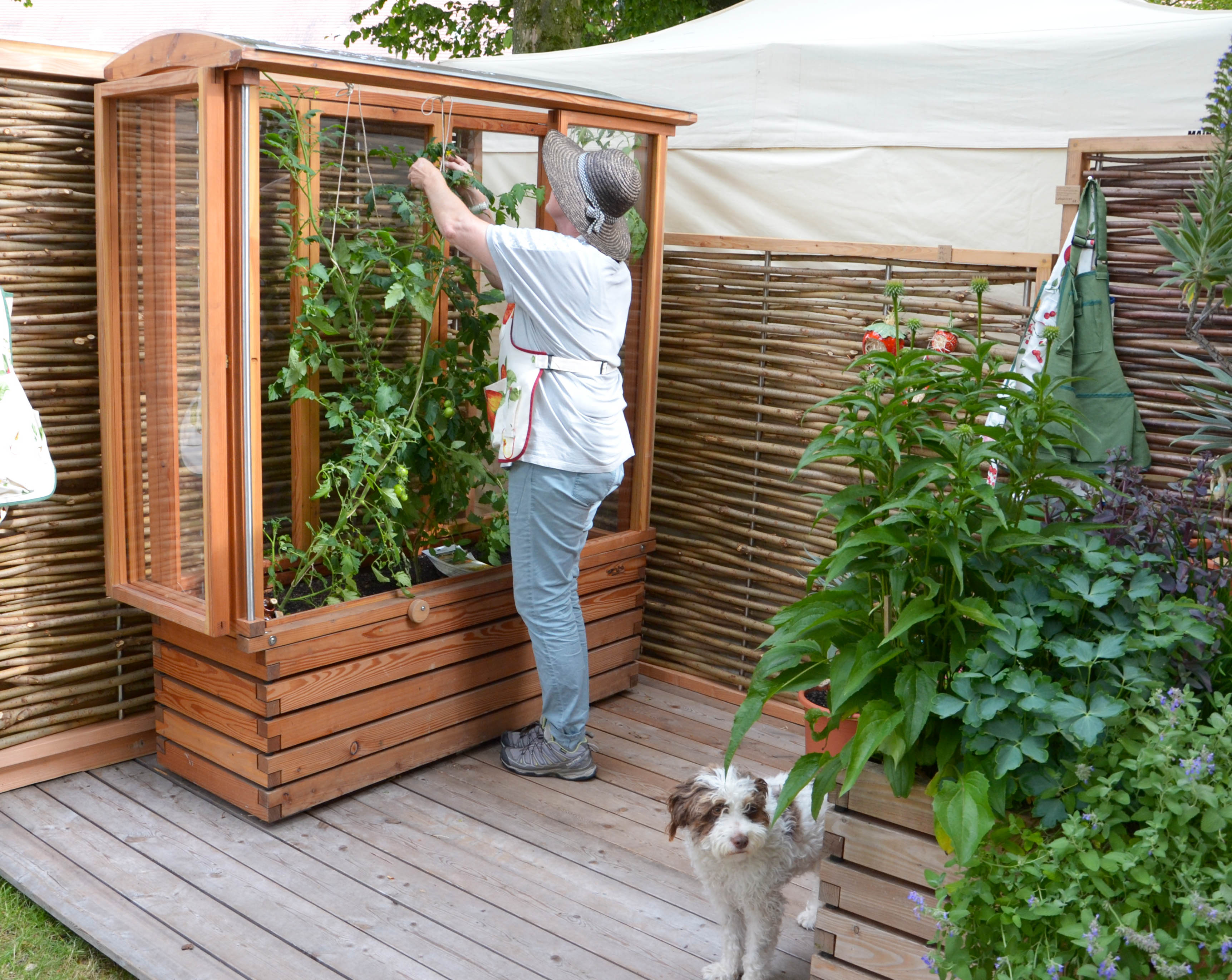 Pin Von Alena Matiasova Auf Gardening In 2020 Tomaten Haus Pflanzkasten Tomatenhaus