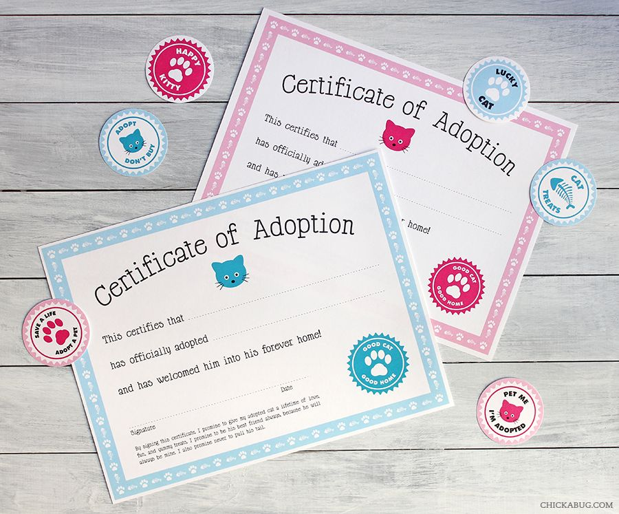 Free printable cat adoption kit Free printable, Adoption and Cat - new dog training certificate template