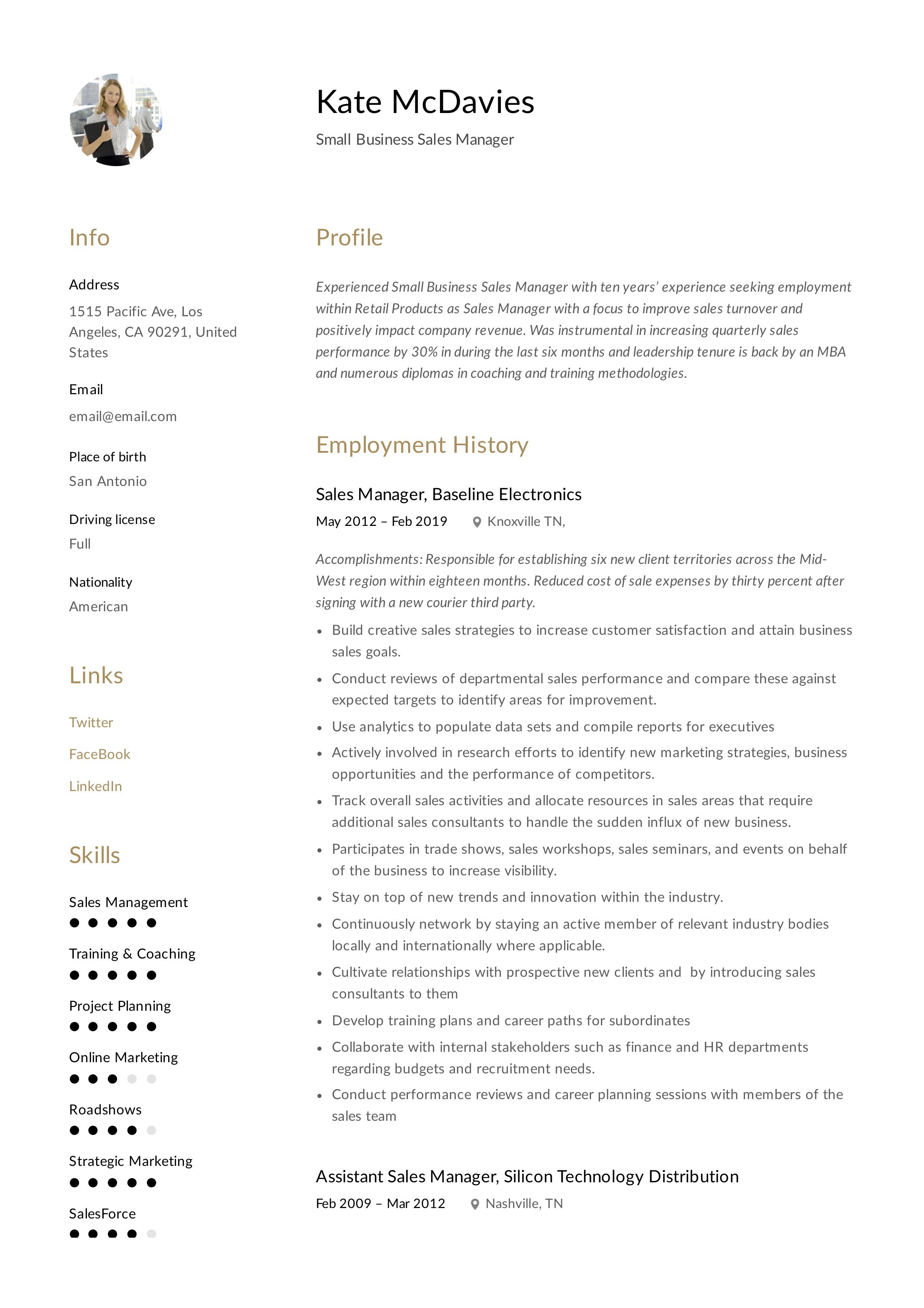 Small Business Sales Manager Resume Template Business Sales Sales Manager Manager Resume