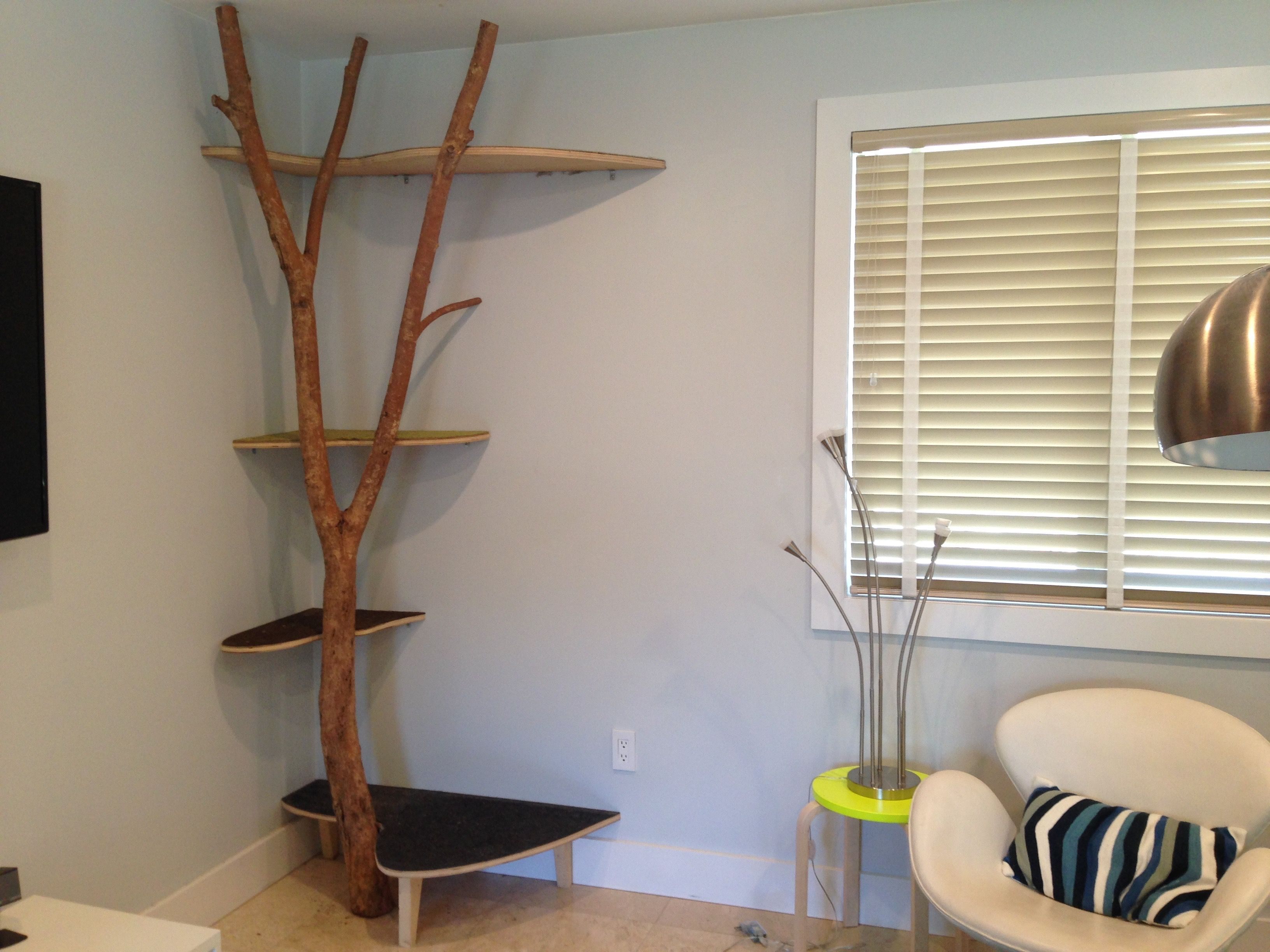 New House, Same Cat Tree! We Built This From A Real Tree Branch And