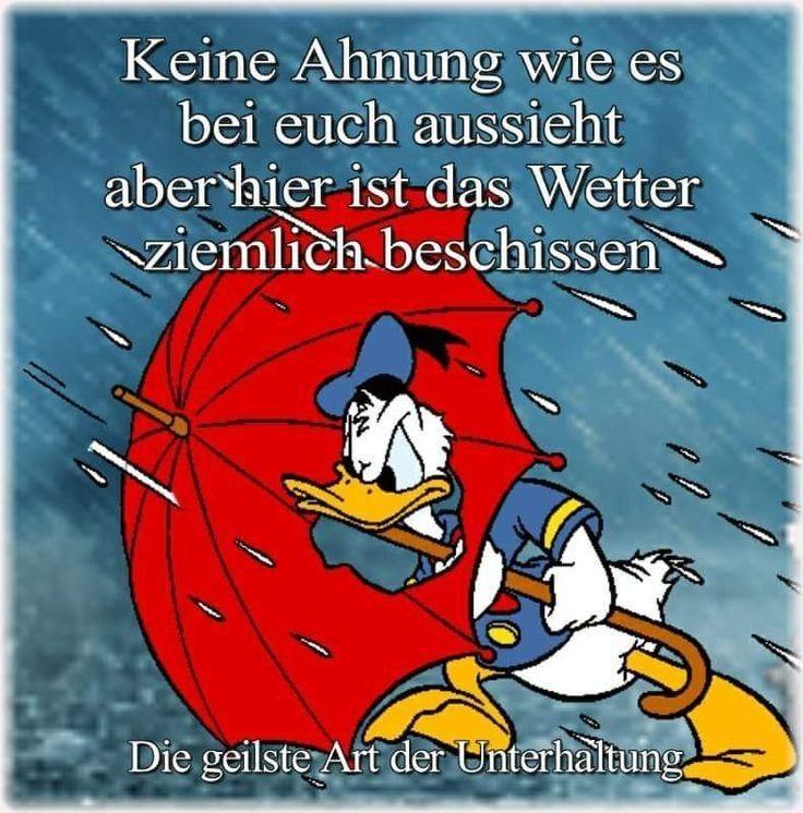 Pin von Stefan Sayer auf Regen/Sturm | Regen bilder lustig