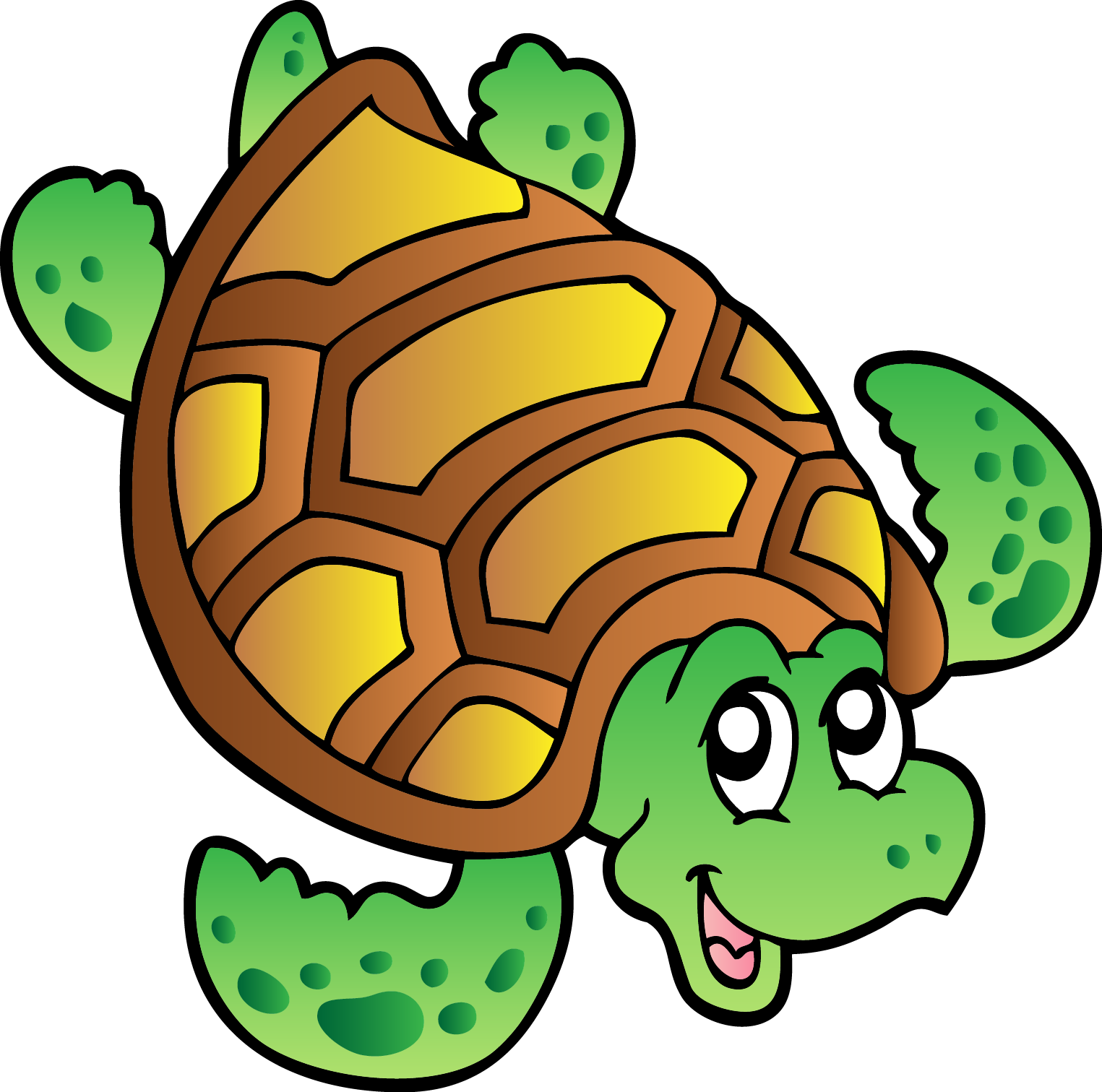 Turtle Cartoon Drawing Turtle Png Image And Clipart Turtle Drawing Cartoon Turtle Art Prints