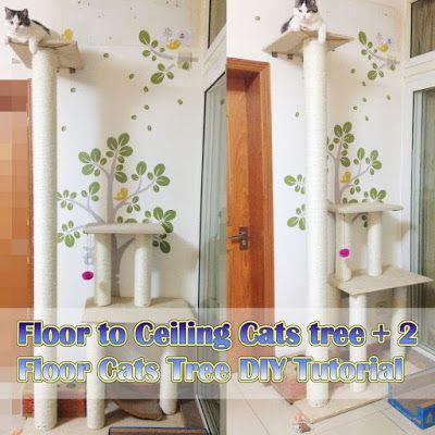 Floor To Ceiling Cats Tree 2 Floor Cats Tree Diy Tutorial 2 Floors Cats Tree Cat Tree Diy Diy Cats Tree Floor To Ce Diy Cat Tree Cat Tree Plans Cool Cat Trees