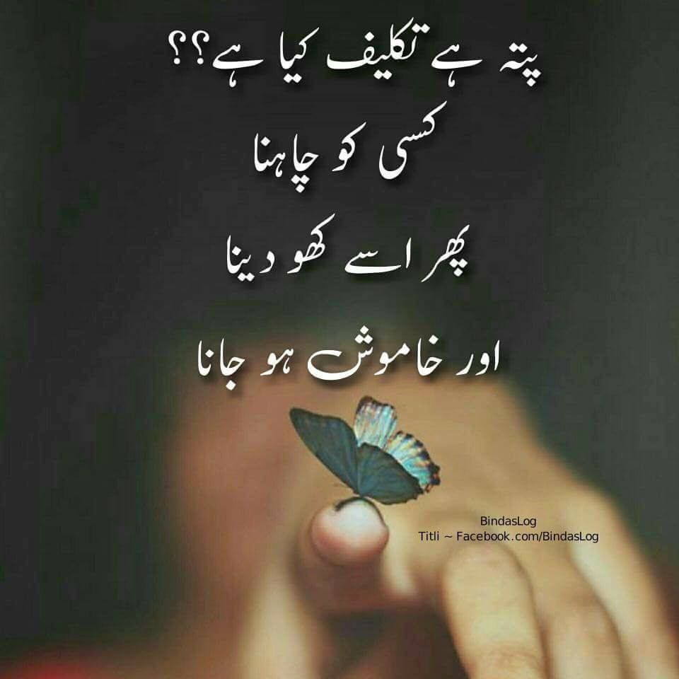 Pin By Fozia Hameed On DP Quote/Poetry