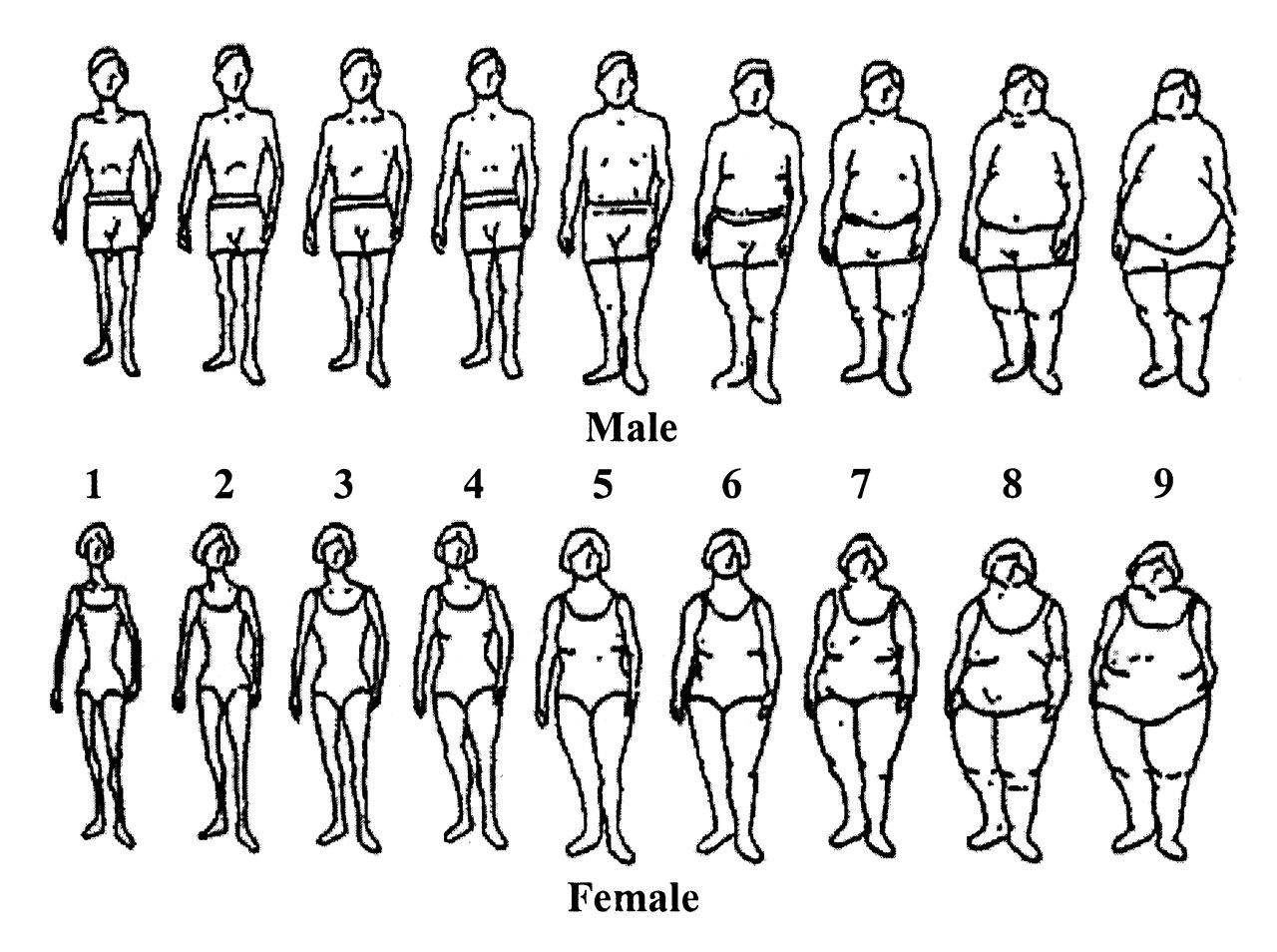 body image dissatisfaction dissertation Elevated bmi is associated with higher dissatisfaction with body image, and there  is  in this thesis the association of body image, bmi and self-esteem to eating.