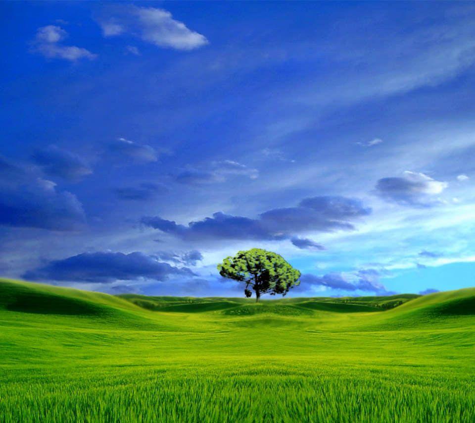 水彩画調の緑の大地のスマホ用壁紙(Android用/960×854)