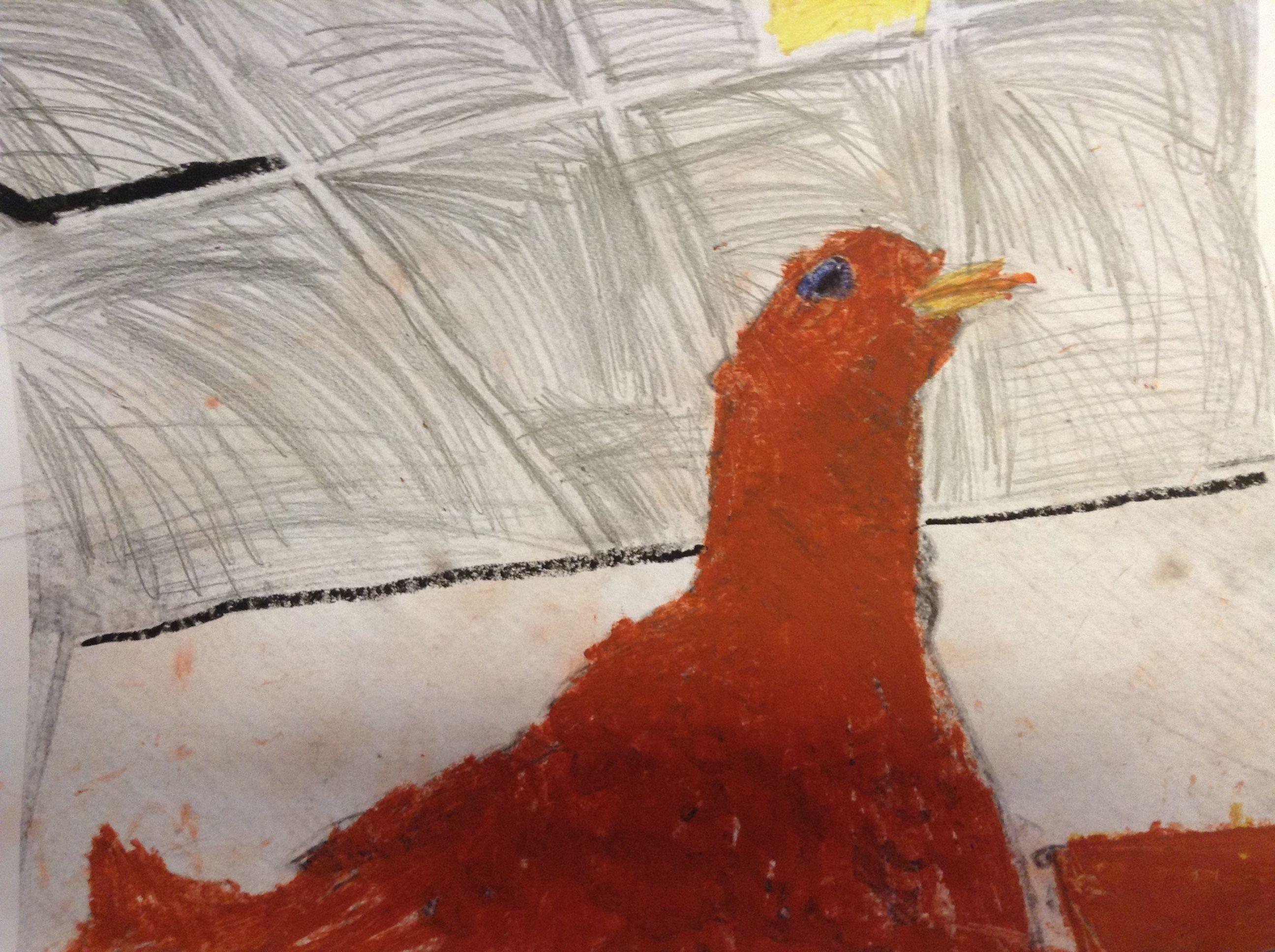 ABK Mortsel - opdracht vogel