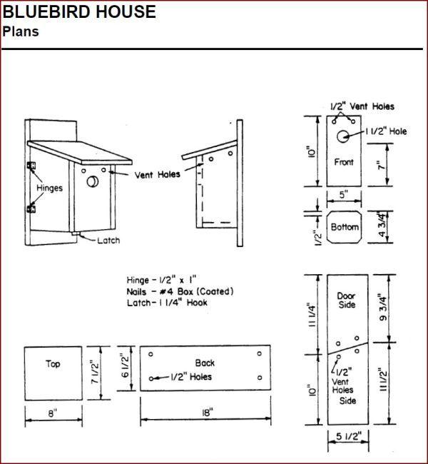 Creating Bluebird Habitat Free Bluebird House Plans