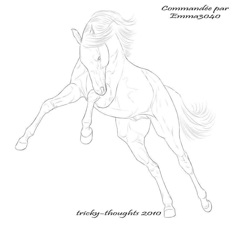 Lineart 14 By Esquisse Designs On Deviantart Horse Coloring Pages Horse Drawings Line Art Drawings [ 894 x 894 Pixel ]