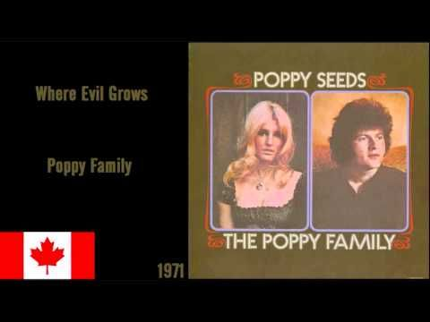 "Poppy Family - ""Where Evil Grows"" (1971)"