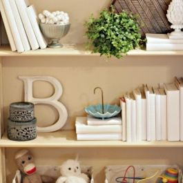 Danas-shelf-middle-1
