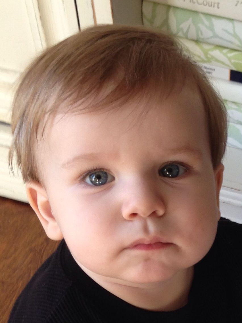 carter - 1 year old | beautiful babies | little boy haircuts