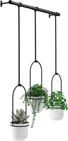 Amazon Com Umbra White Black Triflora Hanging Planter 640 x 480