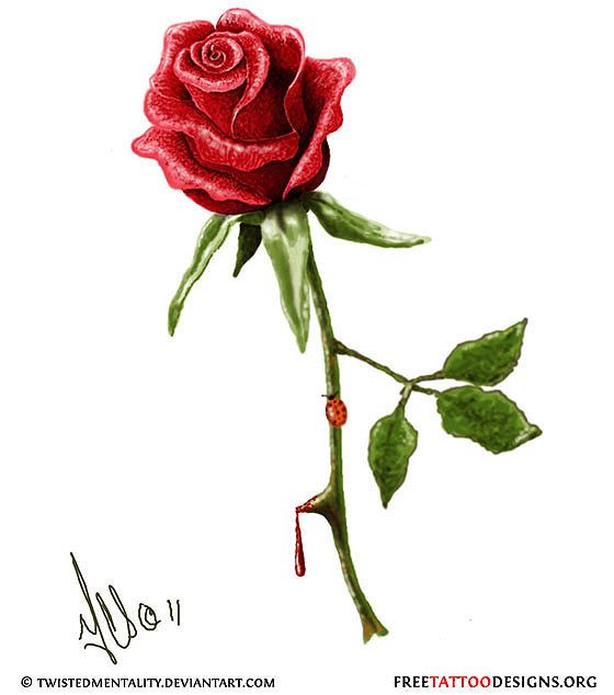 Realistic Single Rose Tattoo: Realistic Rose Tattoo Design- One With Thorns, Dripping