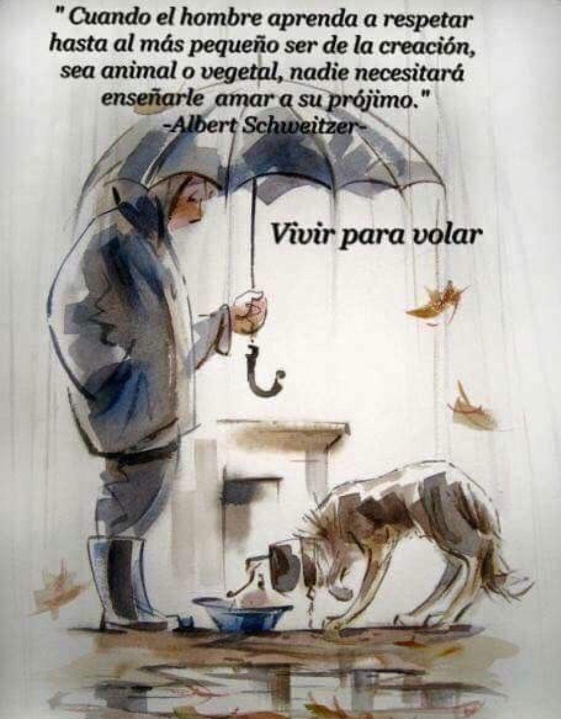 Pin De Luz Yanneth En Frases Motivadoras Perros Frases Animales Frases Frases