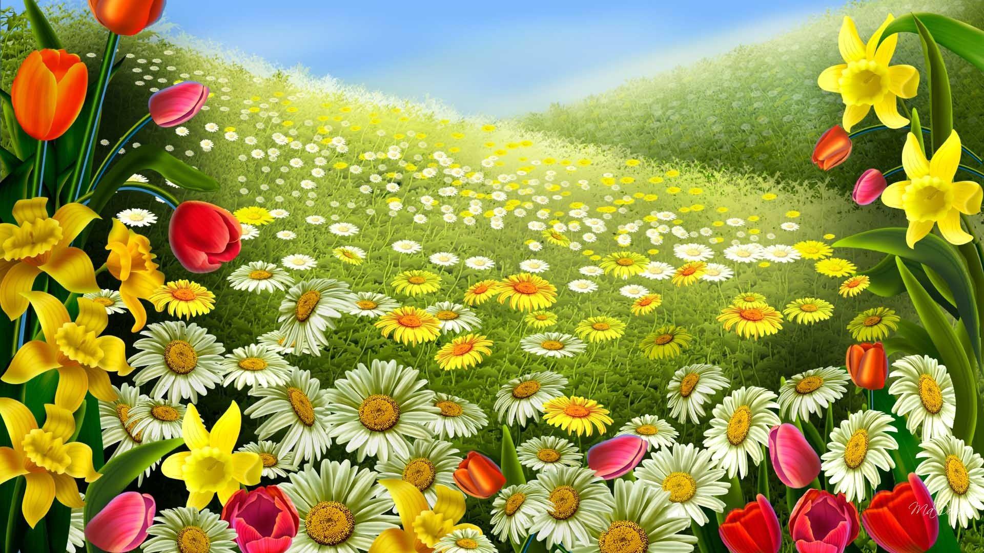 Spring Flowers Wallpapers Beautiful Flowers Images Spring Wallpaper Flower Images Wallpapers