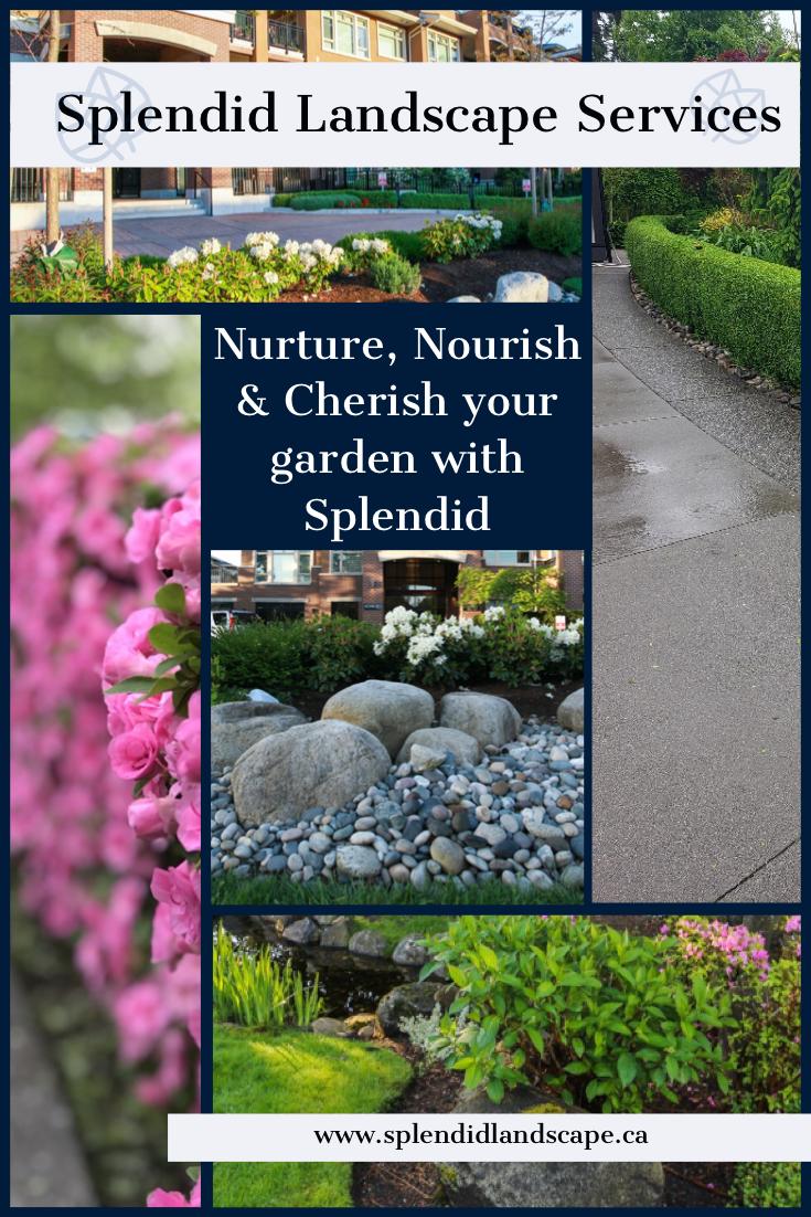 Garden Design Landscape Services Landscape Garden