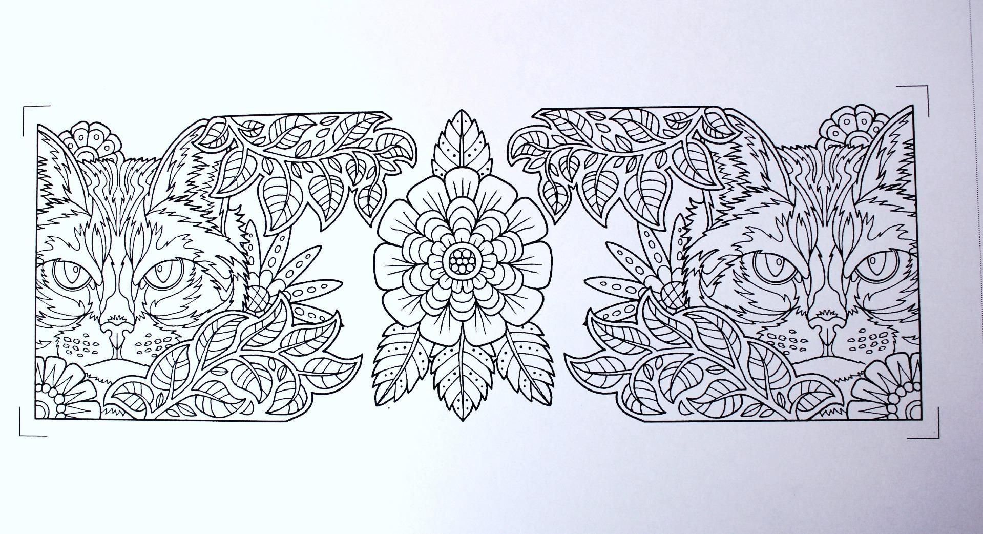 Amazon Garden Paths Coloring Book Inc and Kathryn Marlin