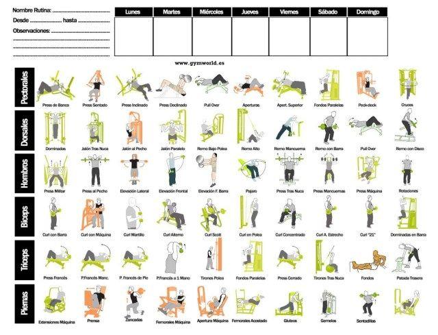 como crear tu rutina de entrenamiento