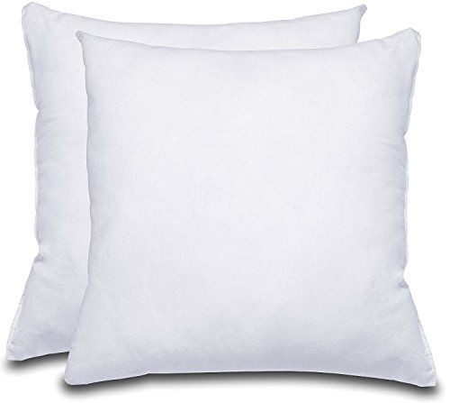 Decorative Pillow Insert 2 Pack Any Size Any Shape Looking For Some Plain Ones To Put Cute Covers On But Decorat Decorative Pillows Bed Pillows Decorative