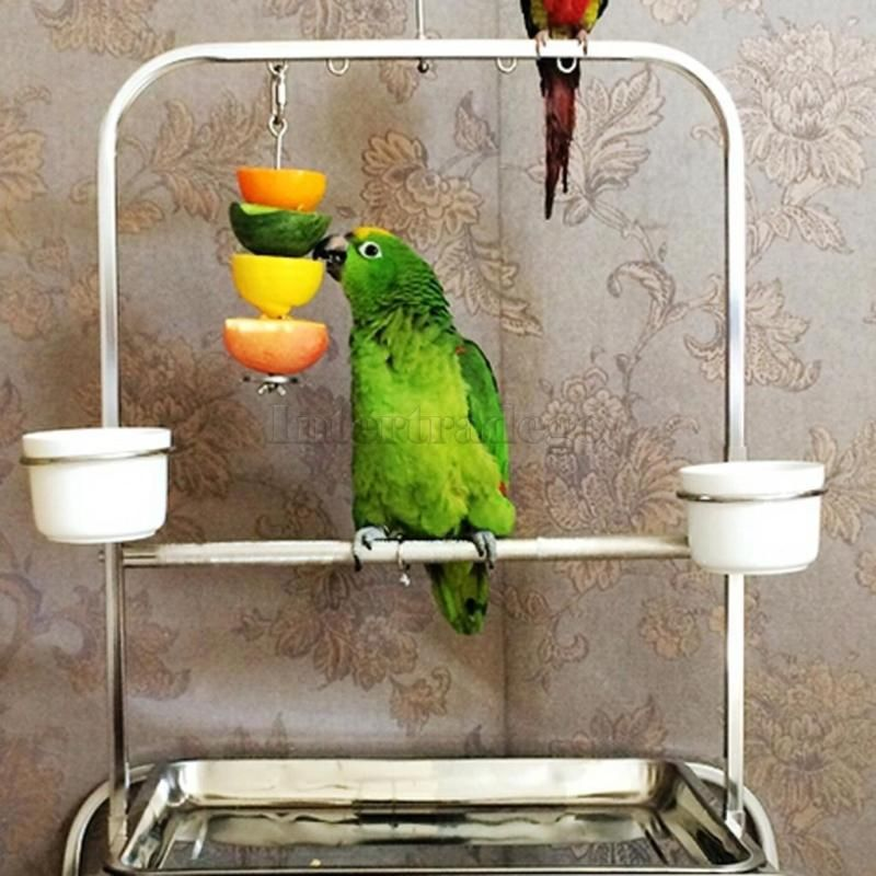 Stainless Steel Skewer Toy Treat Bird Parrot Food Fruit Holder Stick 12cm
