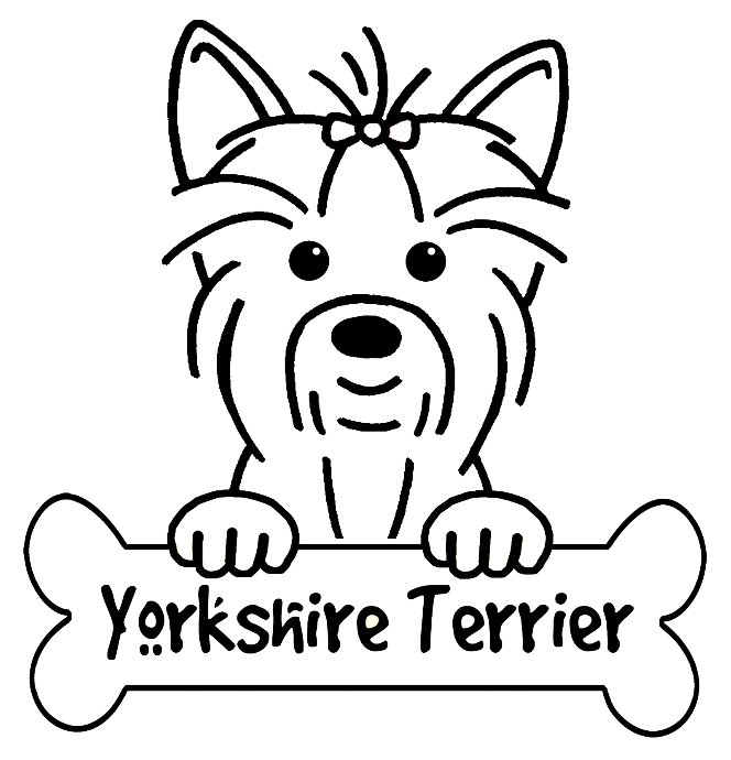 Yorkie coloring page
