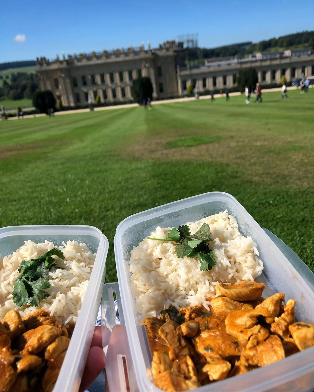 🌿🧺💙Picnic lunch at Chicken Korma & rice 😋☀️🌿