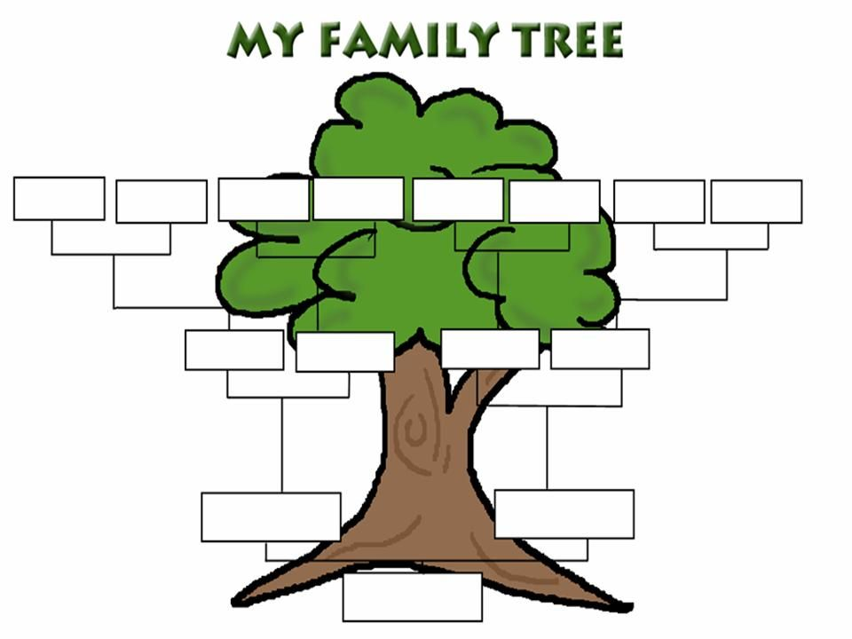 The Family Tree Book Was To Introduce The Extended Family Like