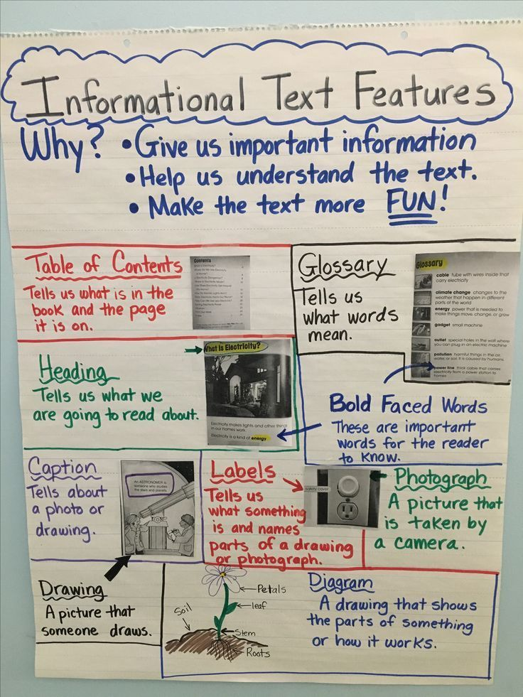 Anchor chart  made for st grade informational text features also rh pinterest