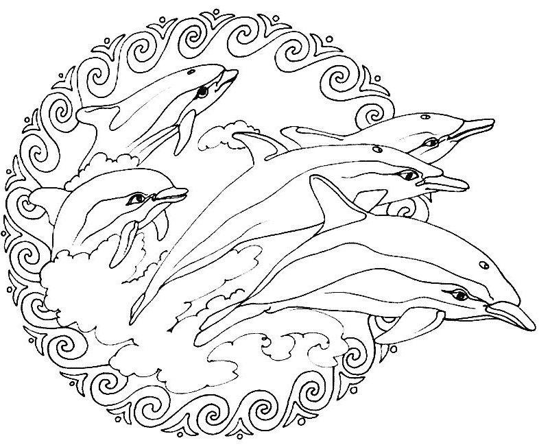 mandalas a colorier : mandala-dauphins.jpg   animal mandelas ... - Animal Mandala Coloring Pages Easy