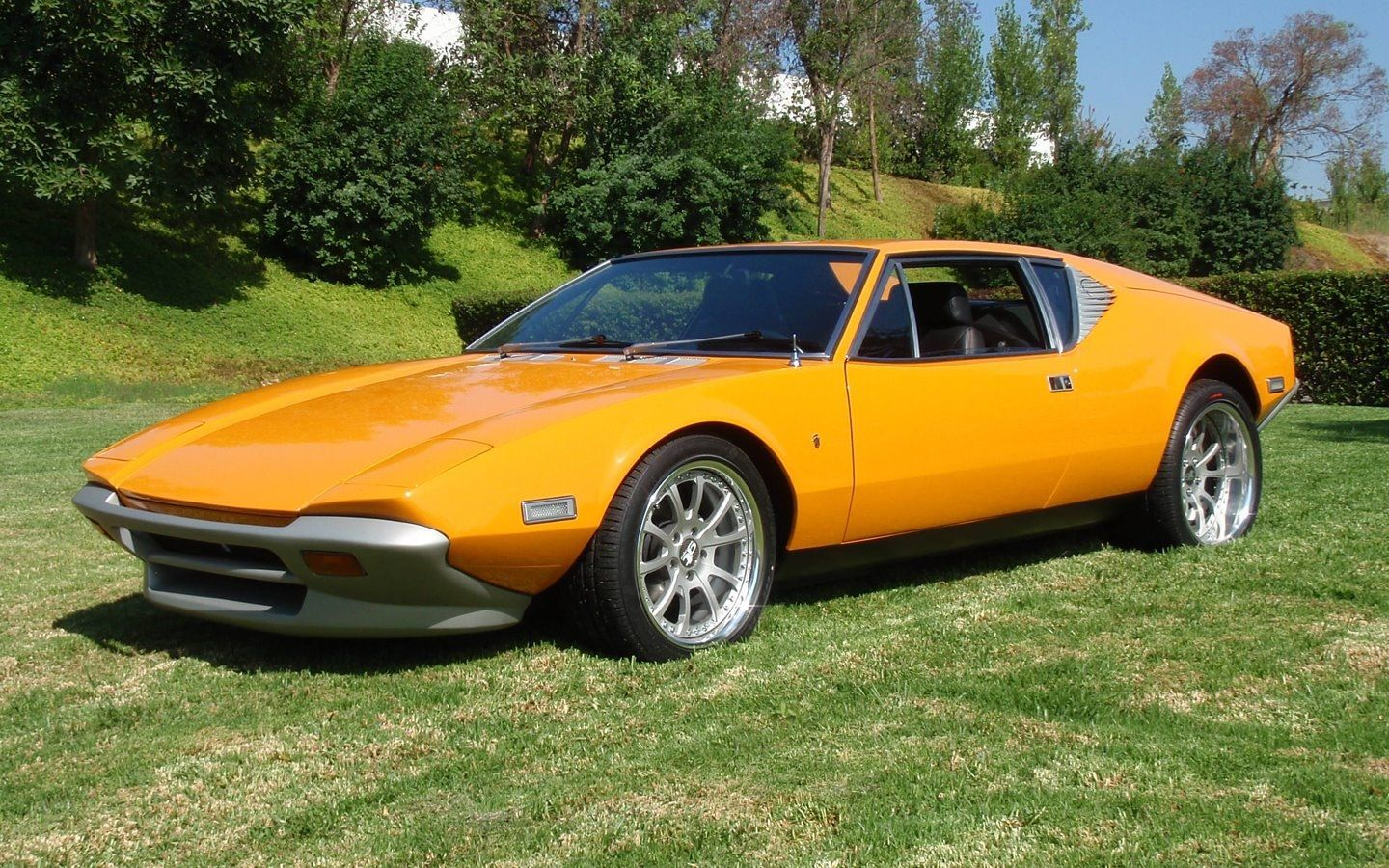 DeTomaso Pantera Dont know anything about this car except that