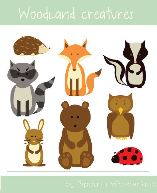 Woodland Creatures Clip Art 8 Images Of Different