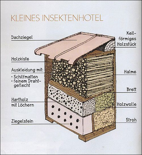 bildergebnis f r insektenhotel bauanleitung garten pinterest insect hotel insects and gardens. Black Bedroom Furniture Sets. Home Design Ideas