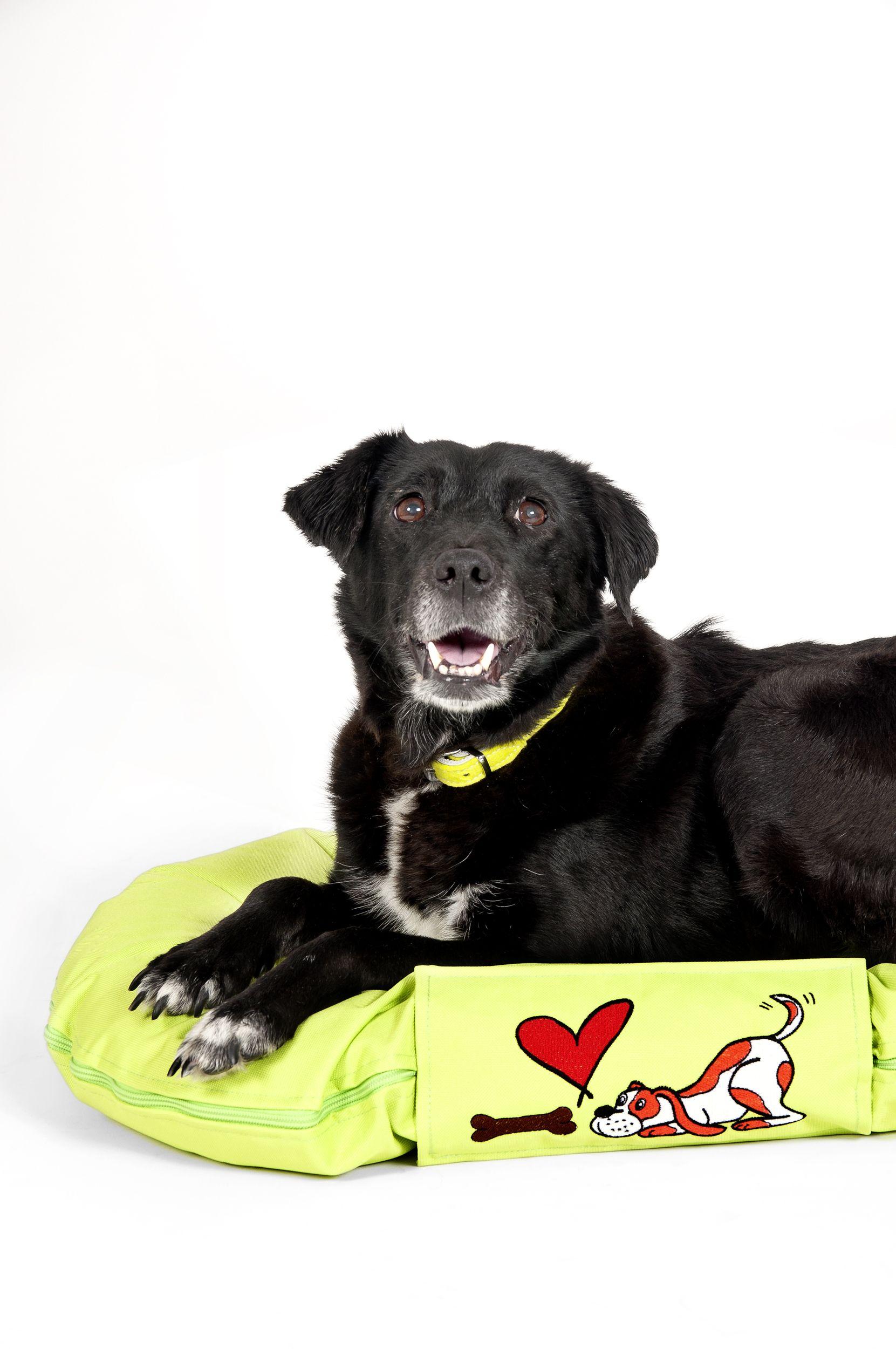 Karlie Pets Accesories