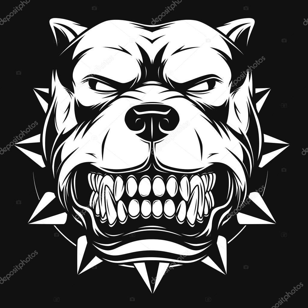 Image Result For Barking Bulldog Angry Pitbull Desenho Desenho