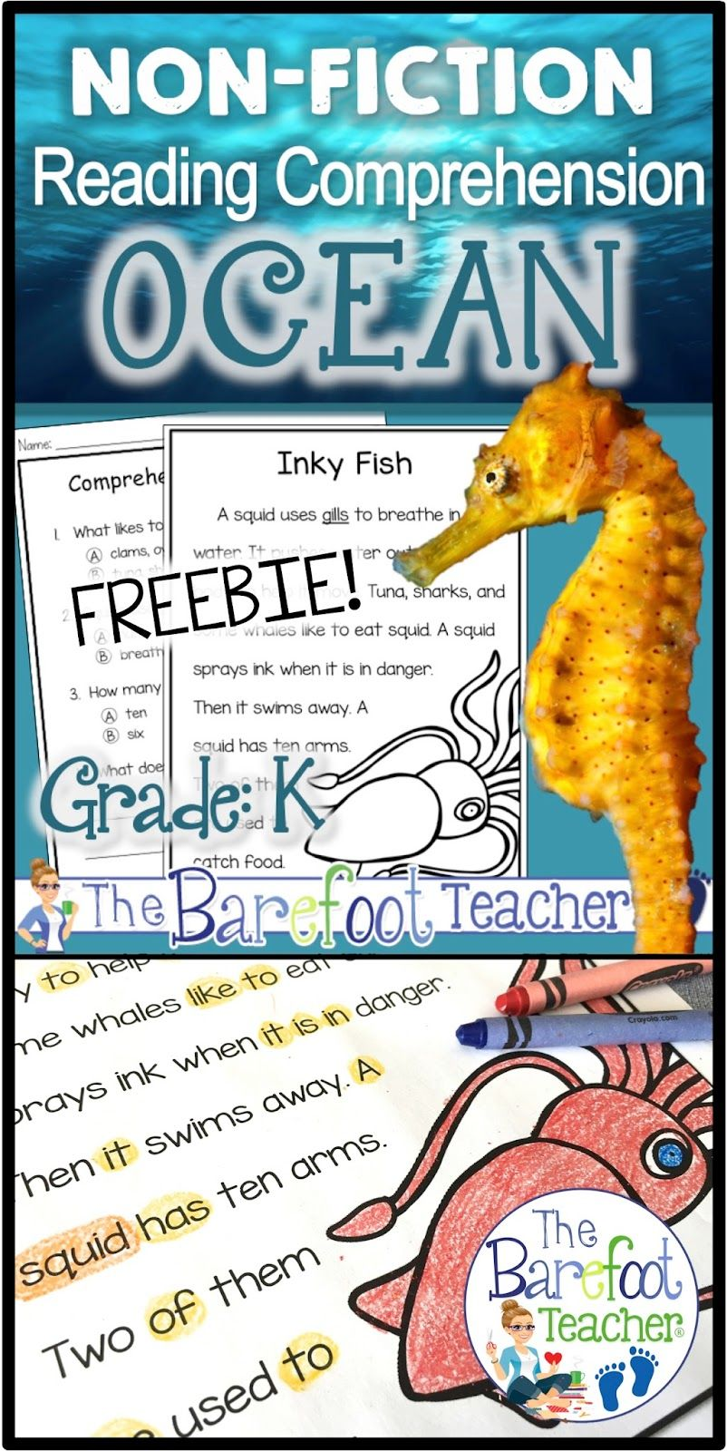 This Free Ocean Reading Comprehension Activities Download Will Go Great With The Other Ideas Reading Comprehension Reading Comprehension Passages Ocean Reading [ 1600 x 802 Pixel ]