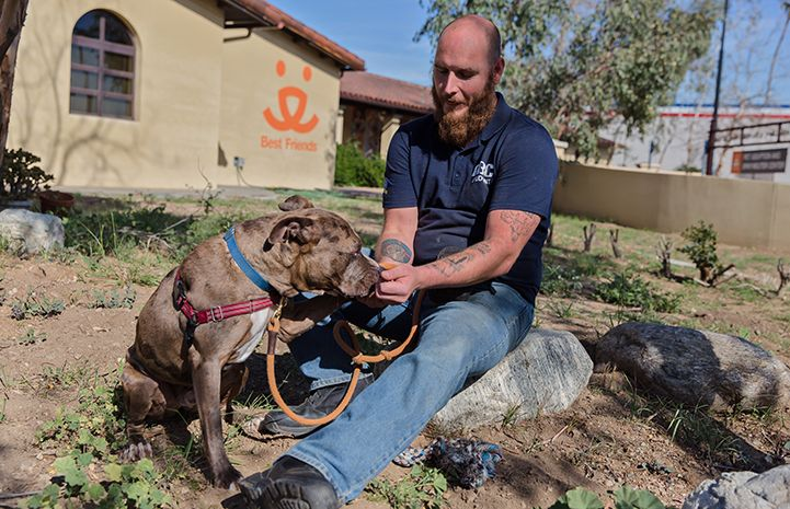 Veterans Make A Difference For Homeless Dogs In L A Dogs
