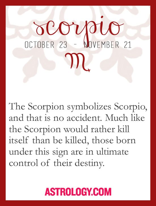 Scorpio The Scorpion Symbolized Scorpio And That Is No Accident