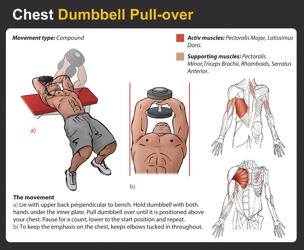 db pullover chest - Google Search | Exercise | Pinterest ...