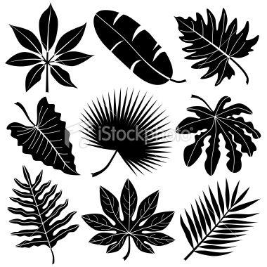 Tropical Leaves Tropical Leaves Leaf Stencil Leaves Vector
