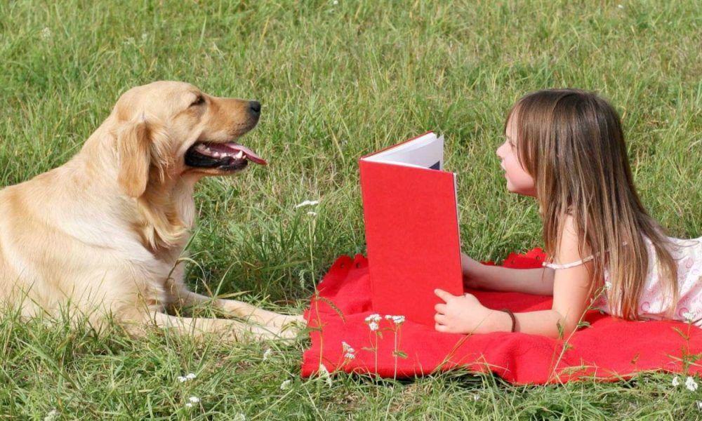 Crianças leem para cães como terapia