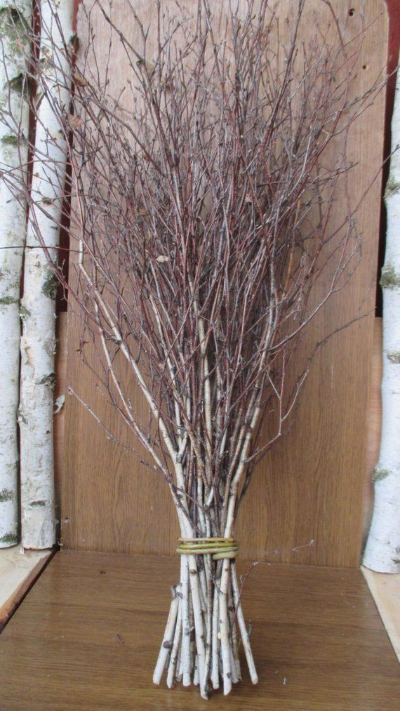 Decorating With Branches And Twigs.Extra Long Birch Twigs Birch Twigs Birch Tree Branches Birch