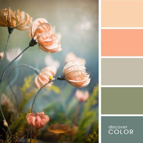 Сочетания цветов, красивые палитры | Цветы, Цветоводство ...